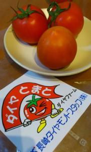 ダイヤトマト